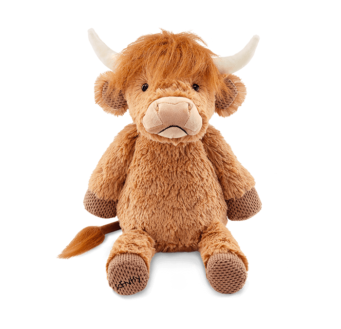 Say Hello to Hamish the Highland Cow!